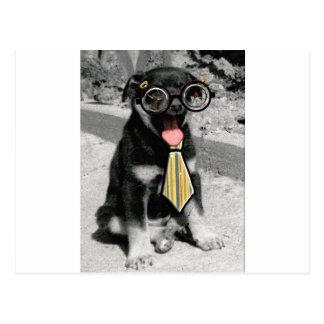 Einstein is one smart black puppy dog postcard