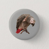 Einstein Parrot Waving Button
