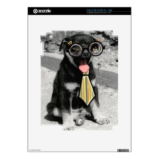Einstein the black puppy with glasses skins for the iPad 2