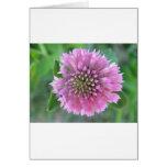Einzigartige rosa Blüte Grußkarten