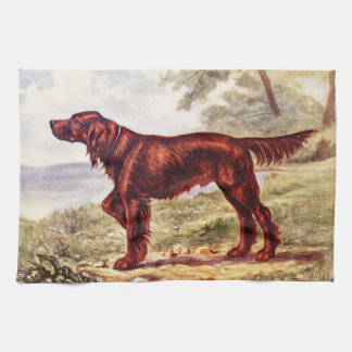 Ejemplo 1900 de Irish Setter del perro que se divi Toalla