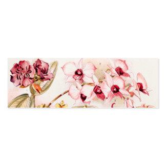 Ejemplo 1911 de la flor rosada de la orquídea del  tarjeta de visita