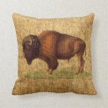 Ejemplo americano del búfalo del bisonte del vinta almohada