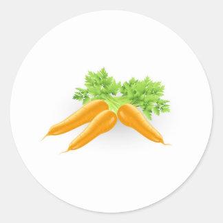 Ejemplo anaranjado sabroso fresco de las zanahoria pegatinas