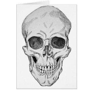 Ejemplo anatómico del cráneo humano (visión tarjeta de felicitación