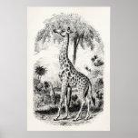 Ejemplo animal personalizado jirafa del vintage poster