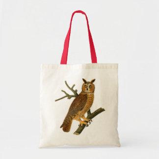 Ejemplo antiguo del búho de la historia natural bolsas