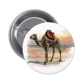 Ejemplo antiguo del camello del dromedario pin redondo 5 cm