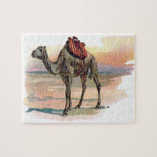 Ejemplo antiguo del camello del dromedario puzzle