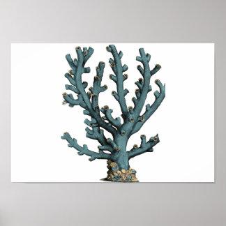 Ejemplo antiguo del coral del mar póster