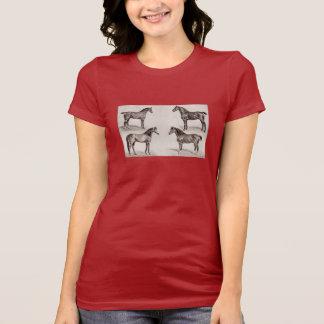 Ejemplo árabe de los caballos del cazador del camisetas