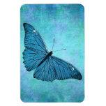Ejemplo azul de los 1800s de la mariposa del trull imanes