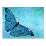 Ejemplo azul de los 1800s de la mariposa del trull tarjeta postal