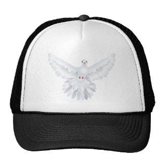 Ejemplo blanco 3 de la paloma gorras