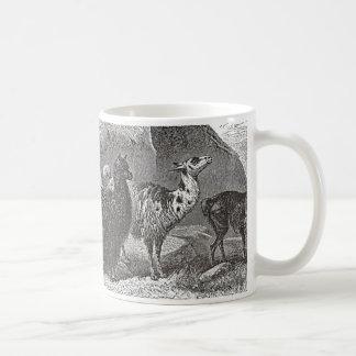 Ejemplo blanco y negro de la alpaca de la llama taza de café