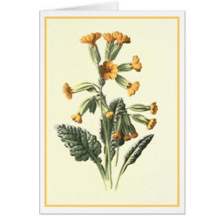 """Ejemplo botánico de """"Cowslip"""" Tarjeta De Felicitación"""