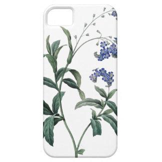 Ejemplo botánico de la nomeolvides de Redoute Funda Para iPhone SE/5/5s