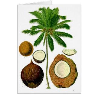 Ejemplo botánico del árbol de coco tarjeta de felicitación