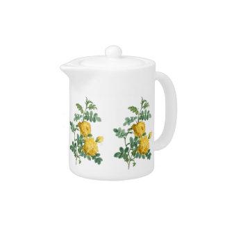 Ejemplo botánico del vintage del rosa amarillo
