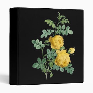 """Ejemplo botánico del vintage del rosa amarillo carpeta 1"""""""