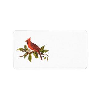 Ejemplo cardinal del pájaro de la canción del etiquetas de dirección