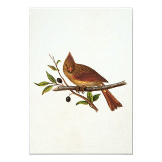 """Ejemplo cardinal del pájaro de la canción del invitación 3.5"""" x 5"""""""