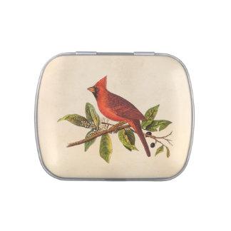 Ejemplo cardinal del pájaro de la canción del latas de caramelos