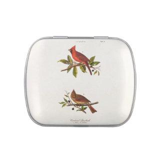 Ejemplo cardinal del pájaro de la canción del frascos de dulces