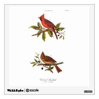 Ejemplo cardinal del pájaro de la canción del vinilo decorativo