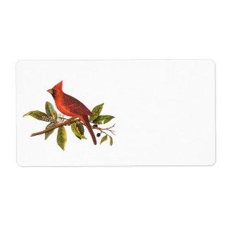 Ejemplo cardinal del pájaro de la canción del vint etiqueta de envío