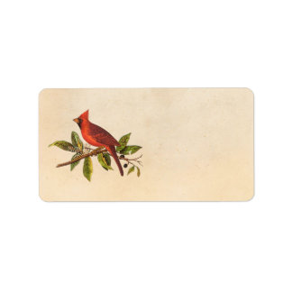 Ejemplo cardinal del pájaro de la canción del vint etiquetas de dirección