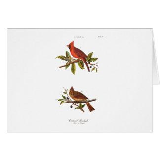 Ejemplo cardinal del pájaro de la canción del vint tarjeton