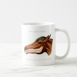 Ejemplo científico de la cabeza de caballo del taza