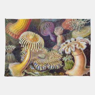 Ejemplo científico de las anémonas de mar del vint toallas de cocina