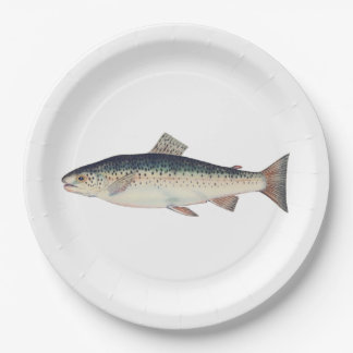 Ejemplo colorido de los salmones del vintage platos de papel