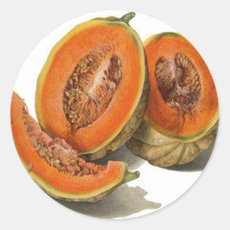 Ejemplo cortado del melón del cantalupo pegatina redonda