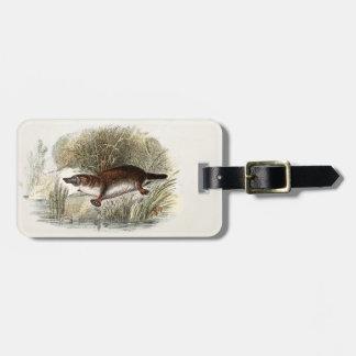 Ejemplo de Bill Platypus del pato de los 1800s del Etiqueta De Equipaje