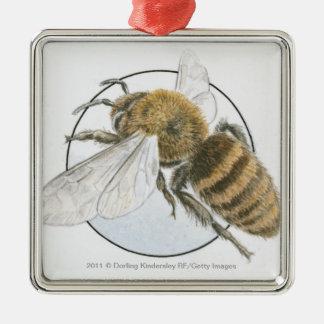 Ejemplo de la abeja europea de la miel adorno navideño cuadrado de metal
