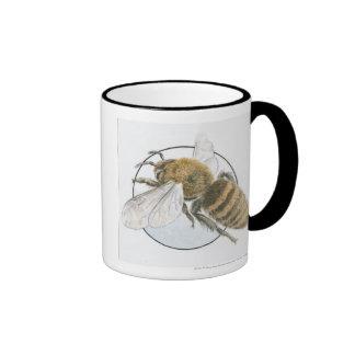 Ejemplo de la abeja europea de la miel tazas de café
