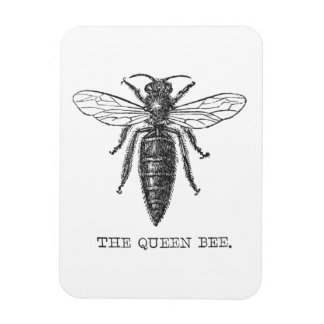 Ejemplo de la abeja reina del vintage imán