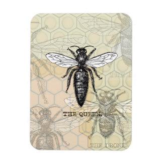 Ejemplo de la abeja reina del vintage imanes rectangulares