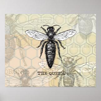 Ejemplo de la abeja reina del vintage póster