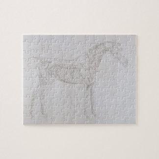 Ejemplo 'de la anatomía del caballo, inclu rompecabeza con fotos