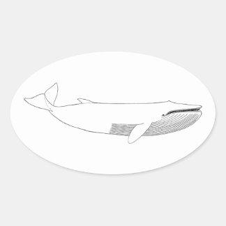 Ejemplo de la ballena de Finback Pegatina Ovalada