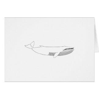 Ejemplo de la ballena de Finback Tarjeta De Felicitación