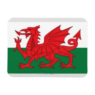 Ejemplo de la bandera nacional de País de Gales, Rectangle Magnet