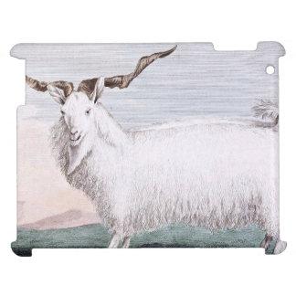 Ejemplo de la cabra del angora