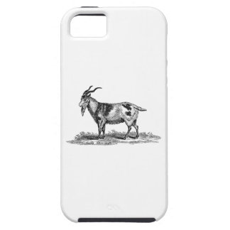 Ejemplo de la cabra nacional del vintage - cabras iPhone 5 Case-Mate cobertura