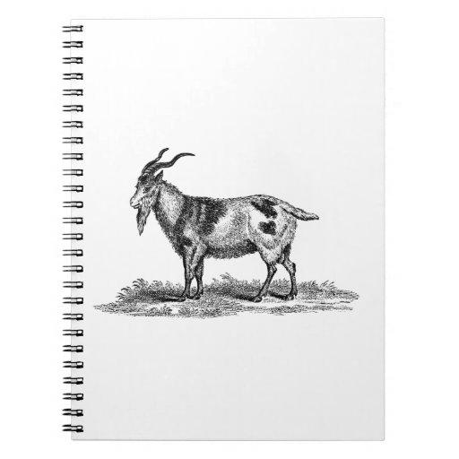 Ejemplo de la cabra nacional del vintage - cabras  cuaderno