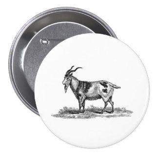Ejemplo de la cabra nacional del vintage - cabras  pin redondo de 3 pulgadas